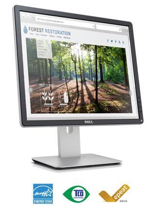 Màn hình Dell P1914S, 19